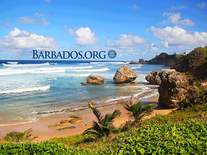Screenshot of Barbados Beaches