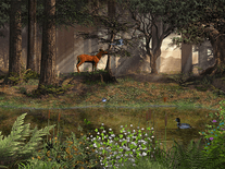 Screenshot of Deep in the Forest