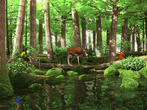 Screenshot of Spring Butterflies