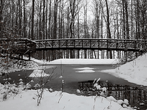 Screenshot of Winter Pond Foot Bridge