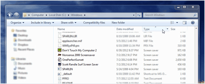 Files within the Windows folder, sorted by type