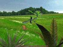 Screenshot of 3D Butterfly