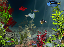 Small screenshot 2 of Aqua Coral Reefs 3D