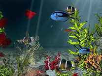 Small screenshot 3 of Aqua Coral Reefs 3D