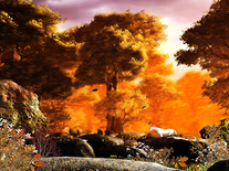 Small screenshot 3 of Autumn Forest