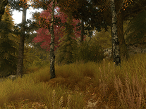 Small screenshot 2 of Autumn Walk 3D
