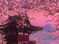 Screenshot of Blooming Sakura 3D