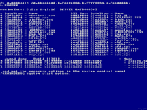 Screenshot of BSOD: Linux Installation