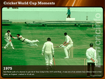 Screenshot of Cricket World Cup Moments