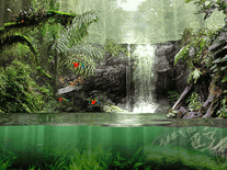 Screenshot of Fascinating Rainforest