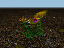 Screenshot of Flowerz