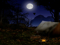 Screenshot of Forest Camp