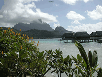 Small screenshot 3 of French Polynesia