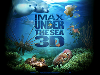 Screenshot of IMAX Under the Sea