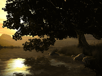 Small screenshot 2 of Lake Tree 3D