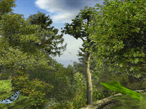 Screenshot of Mystery Forest
