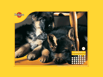 Screenshot of Pedigree Puppy Calendar