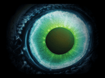 Screenshot of Pendulum Witchcraft Eyeball