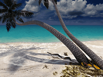 Screenshot of Sandy Beach 3D