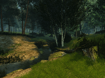 Screenshot of Summer Forest 3D
