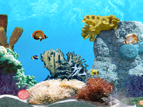 Screenshot of Tropic Fish