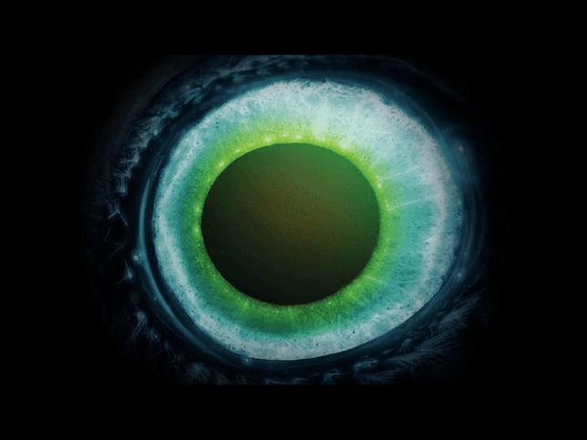 screenshot of pendulum witchcraft eyeball - Halloween Screensavers Animated