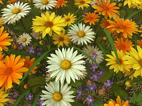 Screenshot of Wildflowers 3D