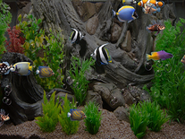 Small screenshot 2 of zz Aquarium 2