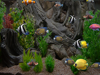 Small screenshot 3 of zz Aquarium 2